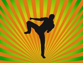 Taekwondo Silhouette