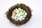 Birds Nest Of Jelly Bean Eggs.