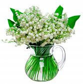 Fresh Lilies Of The Valley In A Glass Jar Isolated On White Background