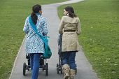 Rear view of two young mothers pushing strollers in park