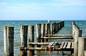 Groynes In The Baltic Sea And Seagulls