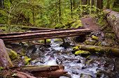 Wooden Bridge on hiking trail in mountain