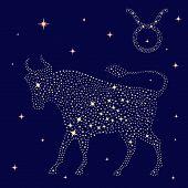 Zodiac Sign Taurus On The Starry Sky