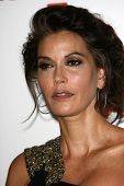 Teri Hatcher at LACMA presents