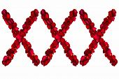 pic of x-rated  - Red dried rose petals arranged into XXX - JPG