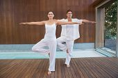 Peaceful couple in white doing yoga together in tree position in health spa