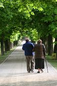 Senior couple walking in a green park