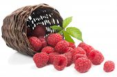 Fresh Raspberries With Leaf  In A Basket Is Scattered
