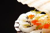 pic of scallops  - scallops presented on a scallop shell - JPG
