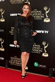 LOS ANGELES - JUN 22:  Lilly Melgar at the 2014 Daytime Emmy Awards Arrivals at the Beverly Hilton H