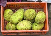 Breadfruits In Red Plastic Box , Asian Market, India