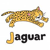 Little cheetah or jaguar for ABC. Alphabet J