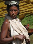 Indian Tribal Woman Carries Her Chickens To Market