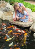 pic of fish pond  - Woman and daughter feeding fishes in pond - JPG