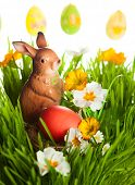 Easter egg and rabbit on green grass