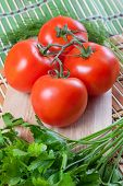 tomatoes on the table with dill and parsley