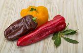 Various Bulgarian Peppers