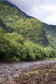 The mountain in a fog and river. Polynesia. Tahiti