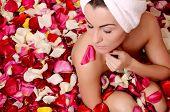 Beautiful female in bath with rose petal. Body care.