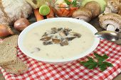 picture of veal  - a healthy Veal soup with brown mushrooms - JPG