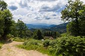 image of naturel  - Sandy path in the Pyrenees in Boussenac in France - JPG