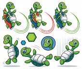 picture of turtle shell  - A set of cartoon turtle characters - JPG