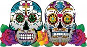 picture of sugar skulls  - 2 sugar skulls with roses in the background - JPG