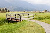 picture of old bridge  - an old wooden bridge on an idyllic meadow or a beautiful golf course