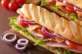 stock photo of tomato sandwich  - long baguette sandwich with ham cheese tomato lettuce - JPG