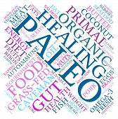 pic of fat-guts  - Paleo word cloud on a white background - JPG