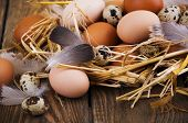 stock photo of quail egg  - Speckled quail eggs and chicken eggs in the manger on a rustic background - JPG