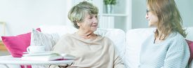 foto of politeness  - Two women are having polite conversation on couch - JPG