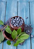 Постер, плакат: Freshly blueberries in metal bowl Juicy and fresh blueberries with green leaves on blue wooden tabl