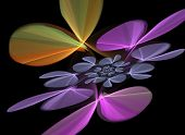 Floral Purple