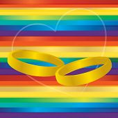 Gay Marriage Rings