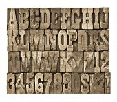 letters and numbers in vintage letterpress wood type  (French clarendon typeset), sepia toned image poster