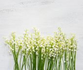 Lilies of the Valley on white shabby wooden background poster
