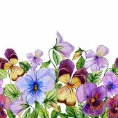 Beautiful Vibrant Violet Flowers With Green Leaves On White Background. Seamless Floral Pattern. Wat poster
