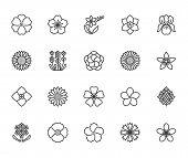 Flowers Flat Line Icons. Beautiful Garden Plants - Sunflower, Poppy, Cherry Flower, Lavender, Gerber poster