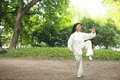 chinese do taichi outside