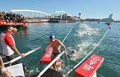 BARCELONA, SPAIN - DECEMBER 25: Open water swimming competition Christmas Cup at the Port waters on