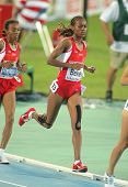 BARCELONA - AUG 1: Alemitu Bekele of Turkey during 5000m women Final of the 20th European Athletics