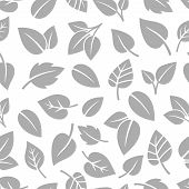 Monochrom Foliage Pattern. Clean Spring Natural Foliage Design Seamless Background, Grey Leaves Vect poster