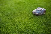 Automatic Lawn Mower Robot Moves On The Grass, Lawn. Side View From Above, Copy Space poster