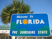 Official Florida Welcome Center Sign & Palm Tree