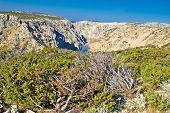 Wild Scenery Of Zrmanja Grand Canyon