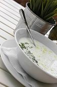 Traditional bulgarian milk soup with cucumbers