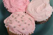 Cupcake3pink