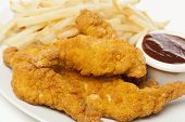 Organic Crispy Chicken Strips
