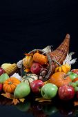 An overflowing cornucopia including pumpkins, grapes, gourds and leaves on a black background